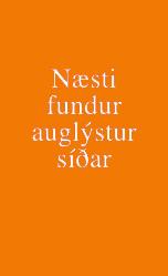 Naesti_fundur17